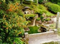 池泉式回遊式庭園<夏>