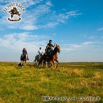 【天気の良い日の乗馬は最高】