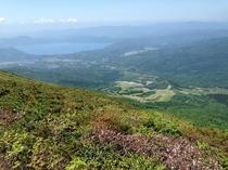 秋田駒ヶ岳から田沢湖を望む