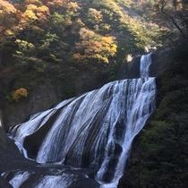 *【袋田の滝】流れが4段に落下することから、別名「四度(よど)の滝」とも呼ばれています。