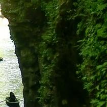 <高千穂峡>木々の木漏れ日が水面にきらめく高千穂峡の美しい景色。