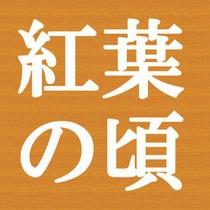 紅葉(10月中旬〜11月中旬)