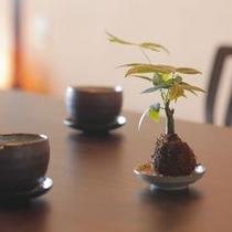 【客室】お部屋の中には、緑を感じていただける苔玉やトピアリーなど設置。