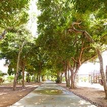 敷地内には木々が生い茂り緑があふれています。
