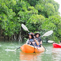 体験人気No1!億首川でマングローブ林をカヌーで軽やかに!