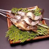 岩魚(塩焼き用)
