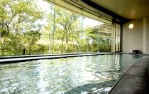 天然温水大浴場 (雅の湯)