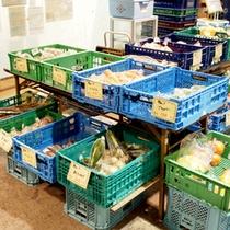 *【売店】特産物や地元で作った野菜など販売しております♪お土産にいかがでしょうか。