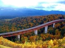 紅葉の三国峠