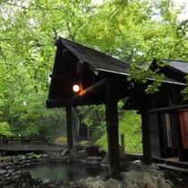 混浴露天風呂「仙郷の湯」