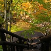 【混浴露天風呂】までは約40段の階段。自然林に囲まれた静かな環境です。