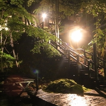 仙郷の湯への階段