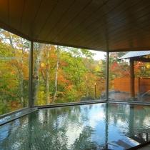秋色に染まった風景をお愉しみください