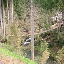 かずら橋などの周辺観光