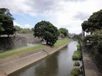 熊本城の長塀沿い