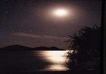 阿波連ビーチに広がる夜空