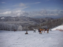 峰の原スキー場上部
