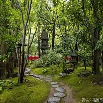 ◎楽水園は本格的日本庭園。お抹茶もいただけます◎