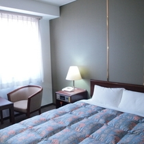 ★ダブルスタンダードルーム★140cm幅のベッド、16平米の広さ