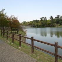 ★聚楽園 公園内★公園内には大きな池があります。