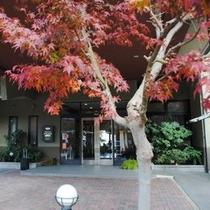 ☆ホテル前の紅葉