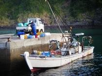 定置網の漁船