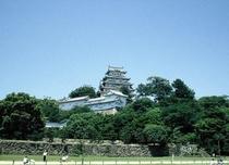 世界遺産「姫路城」新緑