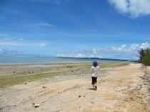 早朝の海をお散歩