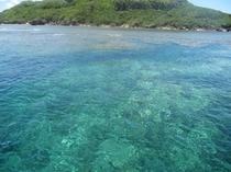 大神島の海
