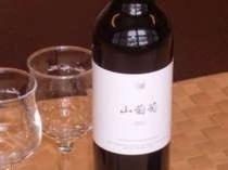 赤ワイン 山葡萄  国産ワインコンクールで金賞を受賞した安曇野ワイナリーのワイン。珍しい山葡