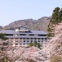 ホテル紅葉館 桜・春の景色