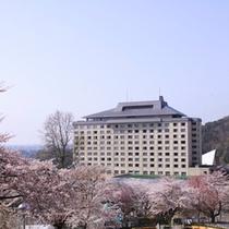 ホテル千秋閣 桜・春の景色