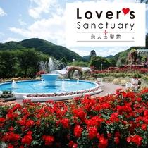 花巻温泉「バラ園」6,000株のバラが色鮮やかに咲き誇ります