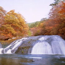 イーハトーブの風景地「釜淵の滝」 紅葉がきれいです