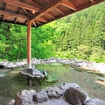 春夏秋冬それぞれに魅力的な姿を、湯浴みをしながらお楽しみください。