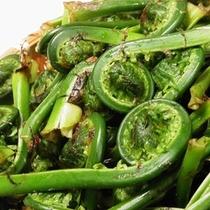 新鮮な山菜をご堪能下さい!