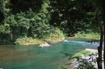 「おくたま路」散策路から見た多摩川