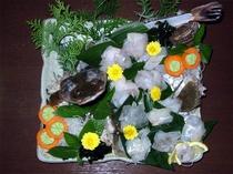 地魚活造りコース