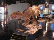 福井で発見された肉食恐竜、フクイラプトル