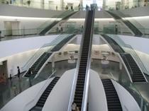 恐竜博物館の内部、入口から一気に地下一階へ。