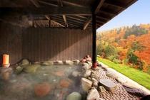印象派の絵の様な、色彩の回廊に幻惑される秋。