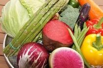 野菜 素材