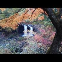 秋_鐘山の滝