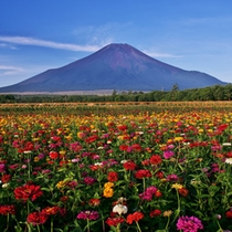 *富士山*