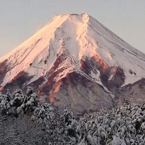 5階からの富士山