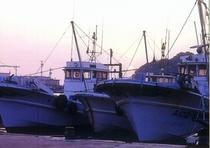 篠島の漁船