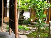 庵 三坊西洞院町町家 玄関からの坪庭です。前で営業されている丸久小山園さんの坪庭です。