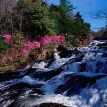 *春夏の湯滝