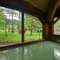 *春夏の新緑パノラマ内風呂(男性)