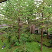 *春夏の樹林棟和室(新緑)